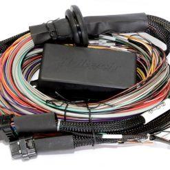 Universal Wire-in ECU Harnesses